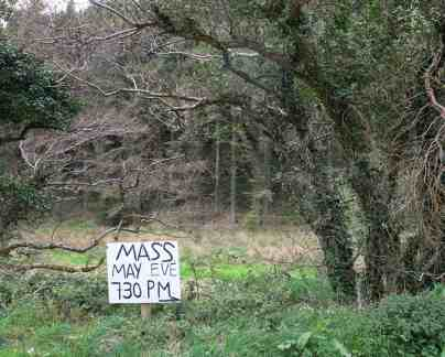 Annual mass