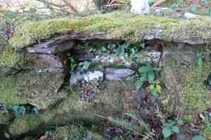 Niches for offerings
