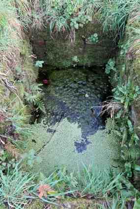 Rectangular well