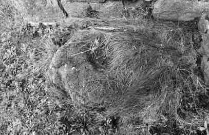 ballaun stone found inside the ruins of the church