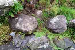 Cupmarked stones within the well