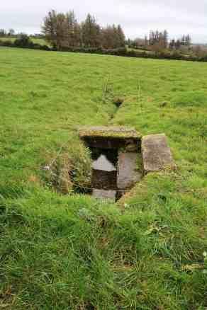 St Finnian's Well