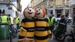 Dos abejorros abrazándose