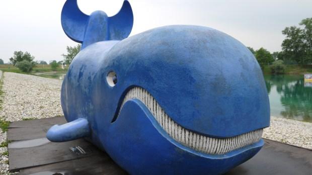 Una ballena (azul)