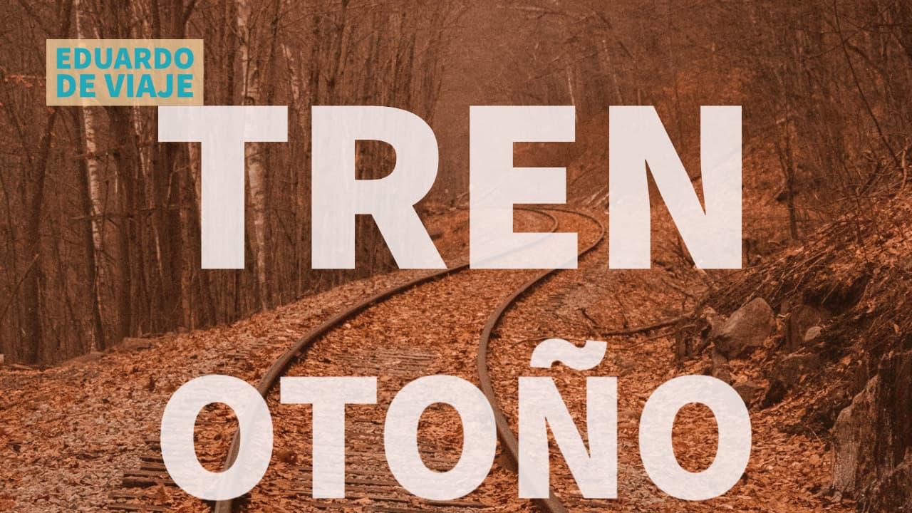 OTOÑO en tren: Viaje en tren desde la cabina en Noruega línea Nordlandsbanen 10 horas