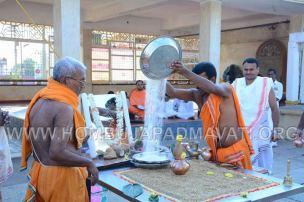 Parshwanath_Jain_Temple_Damasamprokshana_Pooja_Dhwajastambha_Punarpratishta_0004