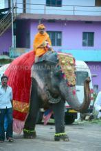 Hombuja-Jain-Math-Humcha-Navarathri-Dasara-Celebrations-Pooja-Day-09-0001