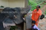 Hombuja-Humcha-Jain-Math-Deepawali-Govu-Pooja-0009