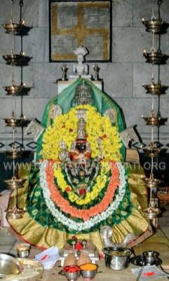 Hombuja-Humcha-Jain-Math-Deepawali-Govu-Cow-Pooja-2018-0002