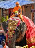 Hombuja-Humcha-Jain-Math-2019-Rathotsava-Dhwaja-0001