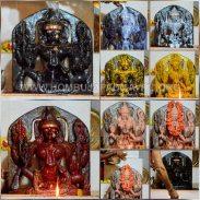 Hombuja-Humcha-Jain-Math-2019-Rathotsava-Pushpa-Belli-Rathotsva-0002-Goddess-Padmavati