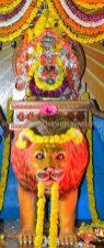Hombuja-Humcha-Jain-Math-2019-Rathotsava-Simhavahanotsava-0006A