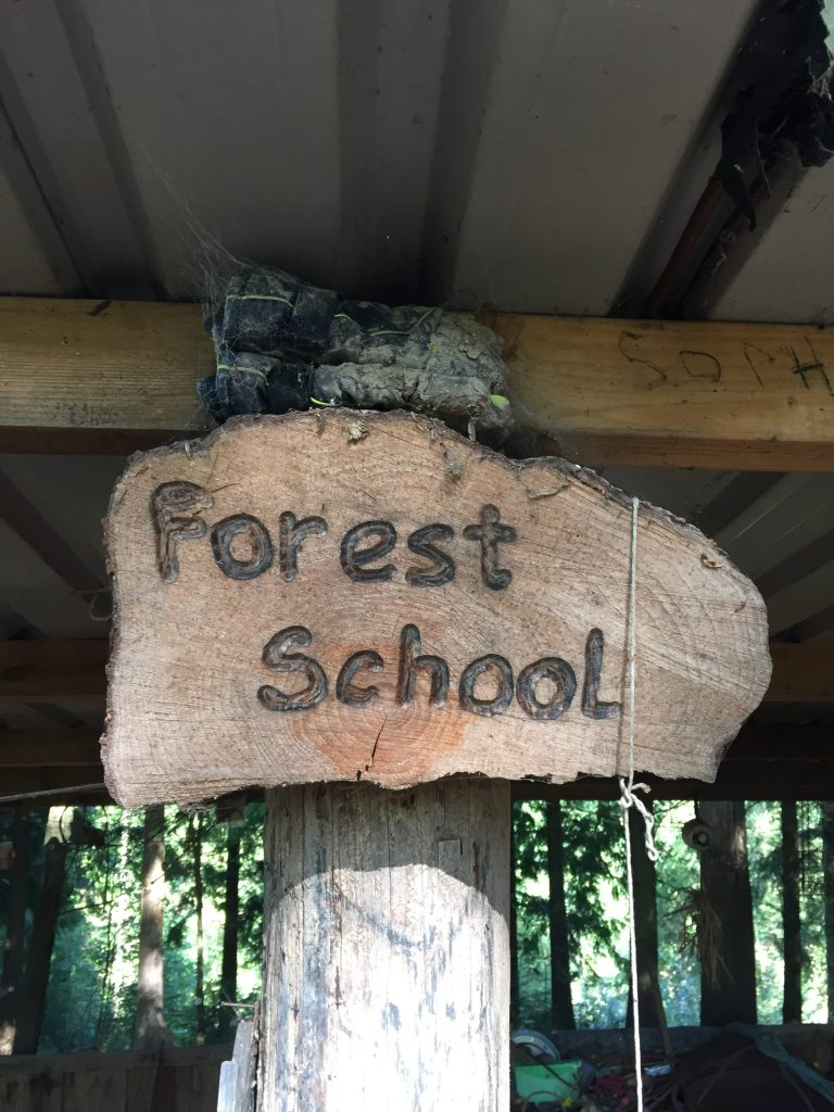 Day Out: The World Outside Forest School