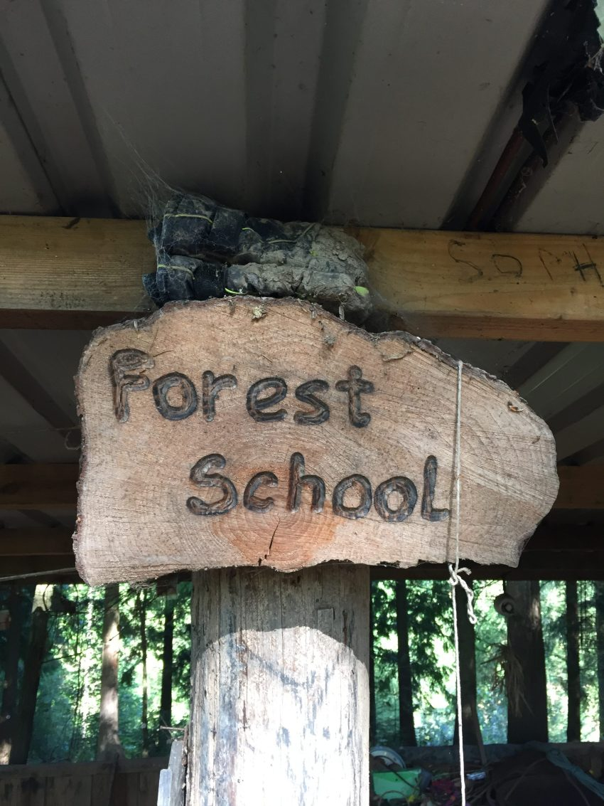 Day Out: The World Outside Forest School | The Home Education Diaries