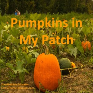Pumpkins in My Patch