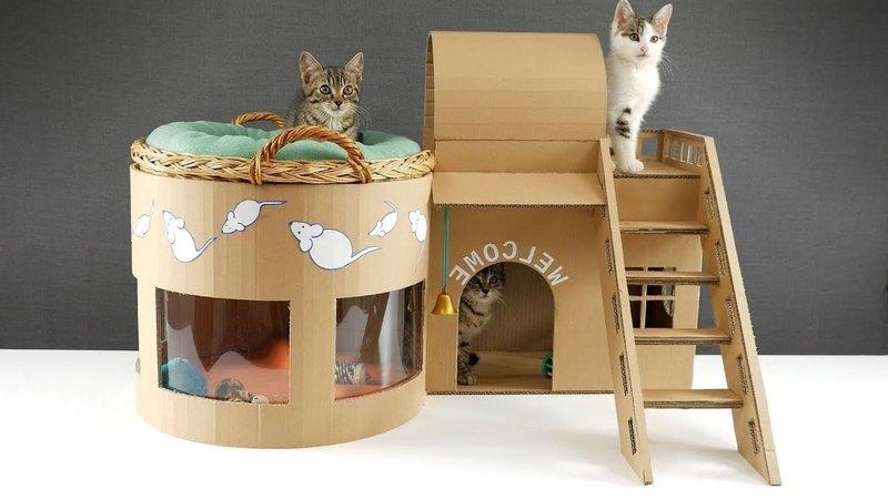 картонный домик для несколько котят