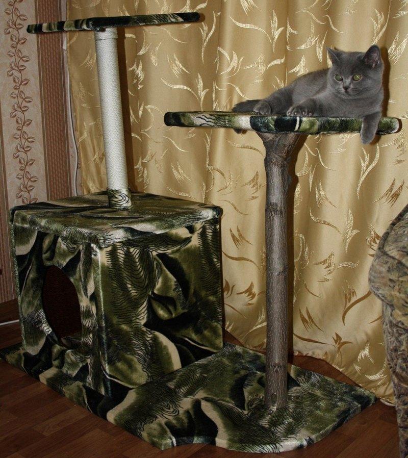 домик для котенка сделанный своими руками с подручных средств