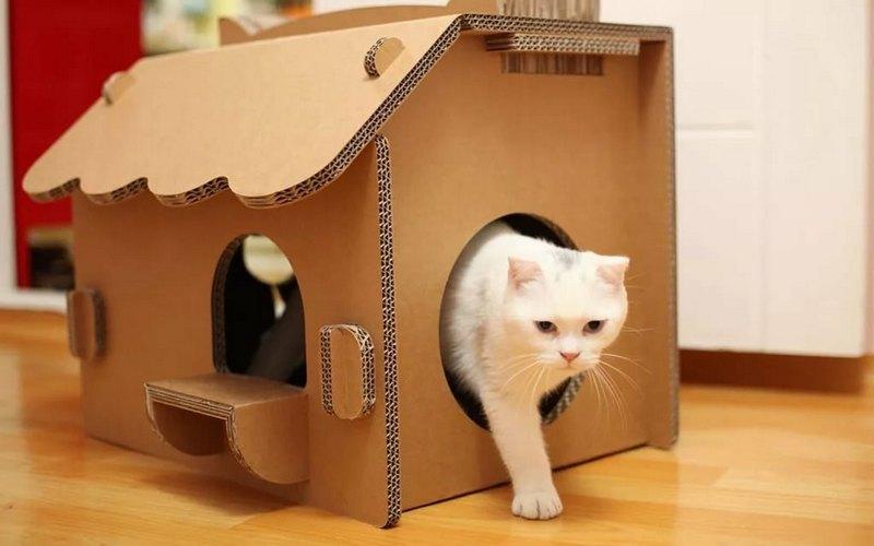 дом для кота из коробок