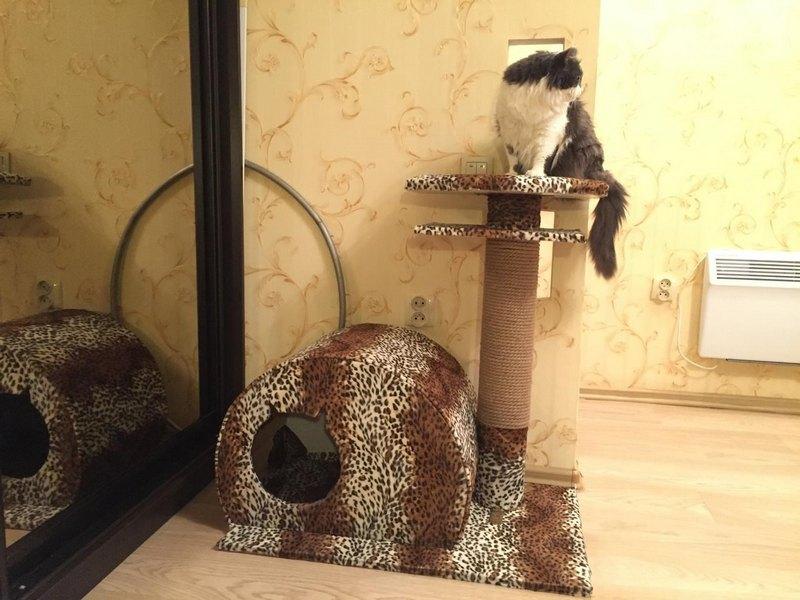 мягкий домик для кота леопардовый