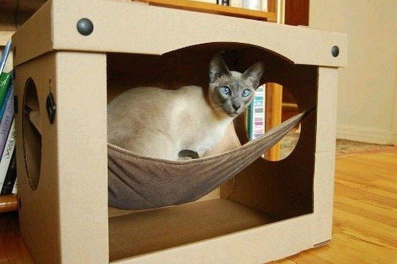 домик для кота из коробки с гамаком