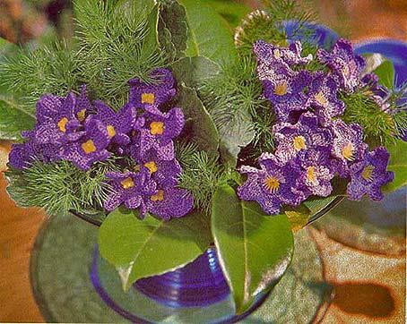 цветы крючком фиалка и лотос мой милый дом хенд мейд идеи