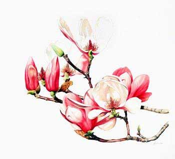 цветок картина