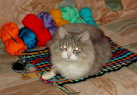 кот вязание крючком в этническом стиле