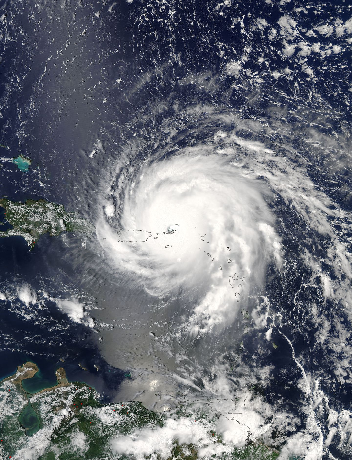 Looking Irma in the eye