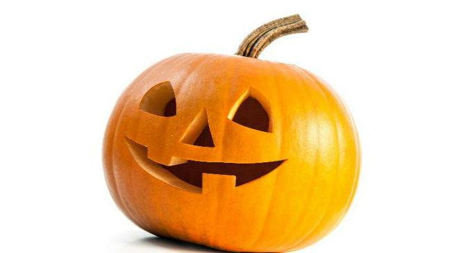 Image result for free pictures of pumpkins