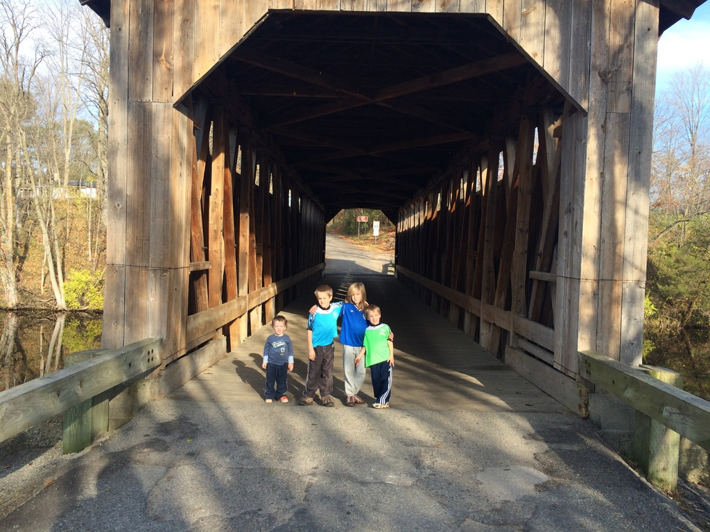 Covered Bridge in Fallasburg Park