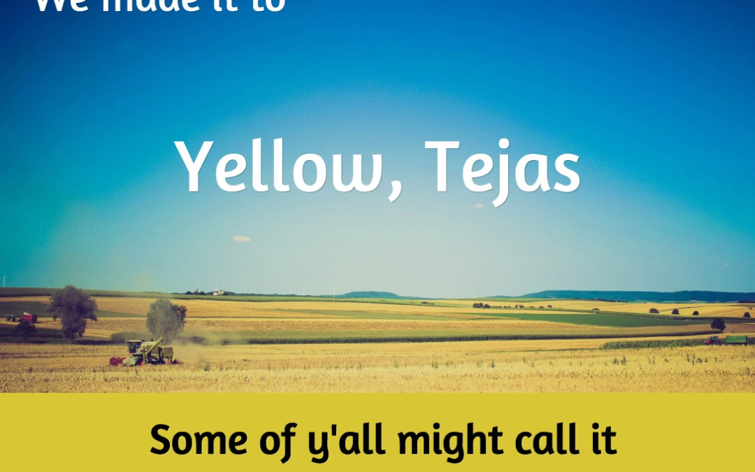 Yellow Tejas