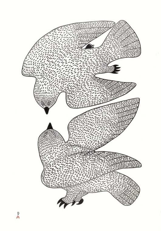 QUVIANAQTUK PUDLAT Sparring Owls