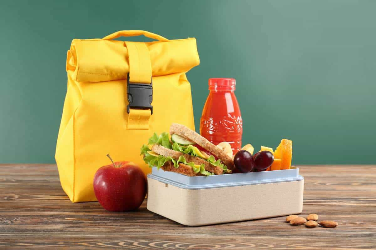 adult insulated lunch bag