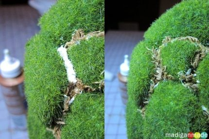 Guest Post: Easy Moss Topiary