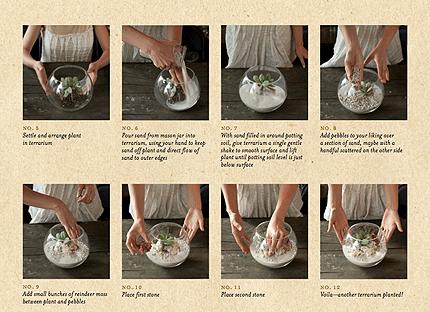 Book Review: Terrarium Craft: Create 50 Magical, Miniature Worlds