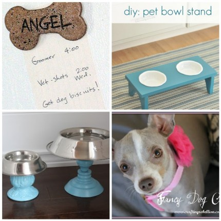4 Fun Dog Projects