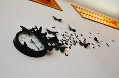 time-flies-butterflies