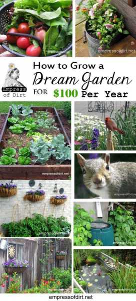 How-to-grow-a-dream-garden-for-100-dollars-per-year