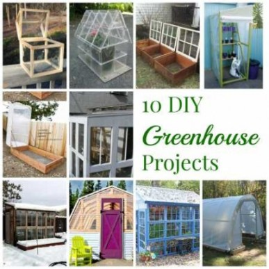 10 DIY greenhouses