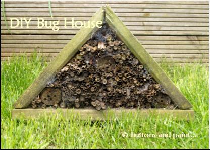DIY Bug House