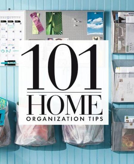 101organization