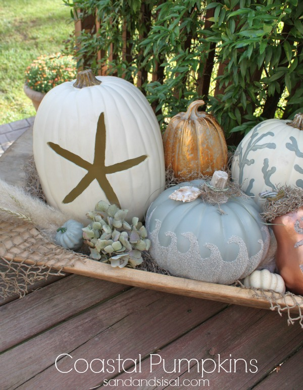 Coastal-Pumpkins-by-Sand-and-Sisal
