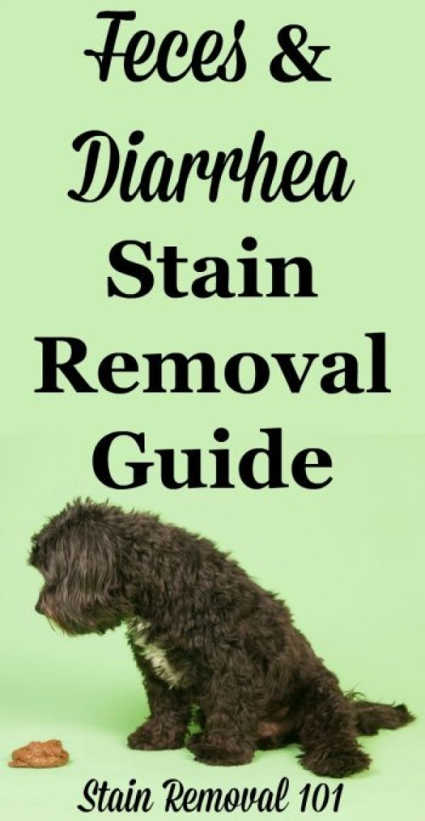 stainremoval