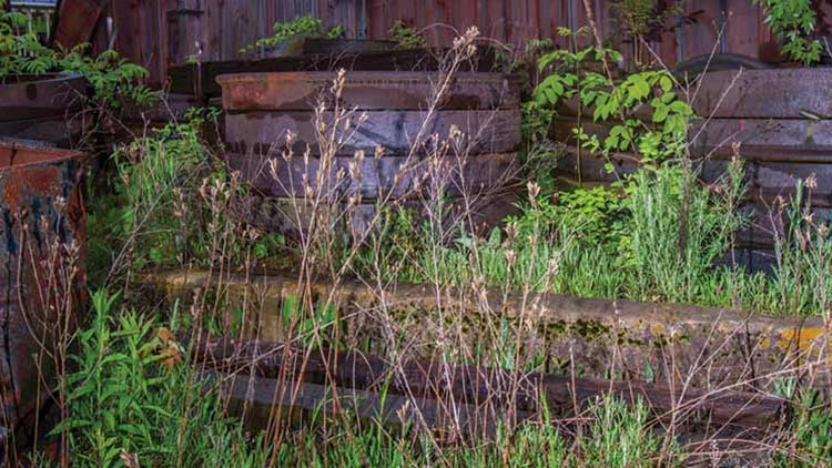 railroad ties lying in the brush by an old barn