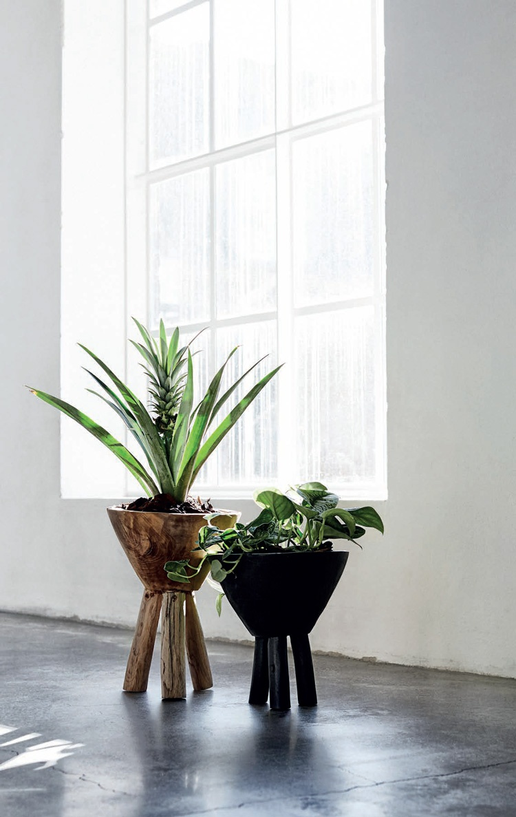 Celebrating Nature with VASES - Home and Lifestyle Magazine