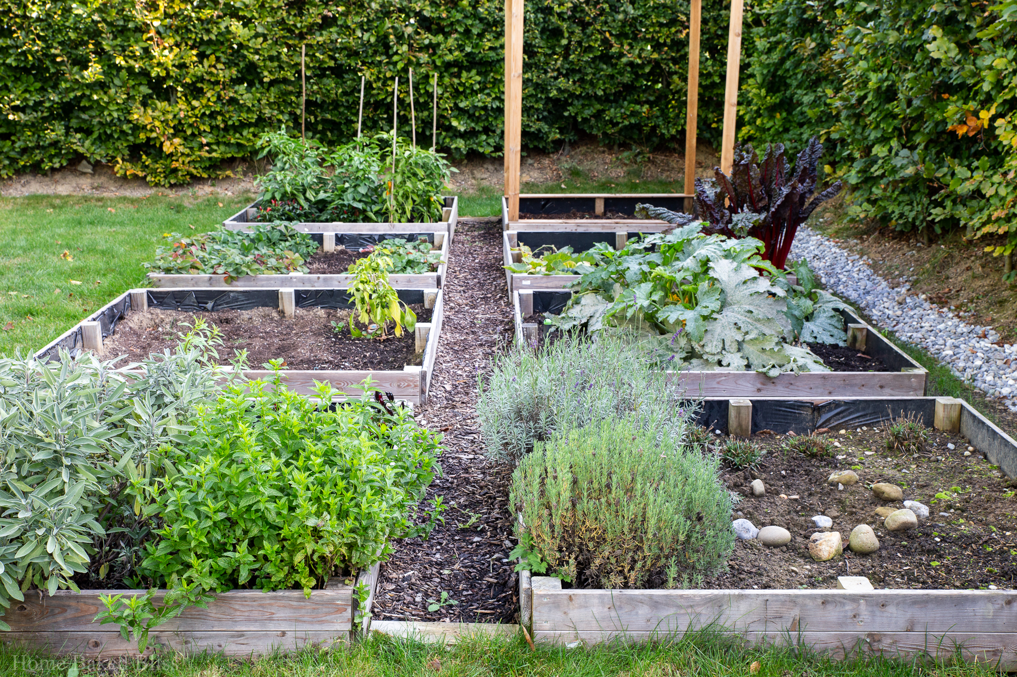 Overview of the vegetable beds