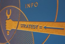 Niche Market Information and Strategies