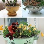 39 Best Creative Garden Container Ideas And Designs For 2021