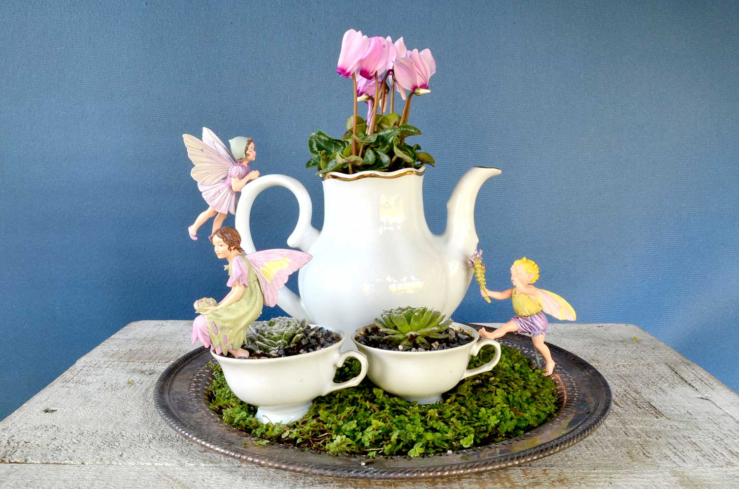 31 Best Teacup Mini Garden Ideas And Designs For