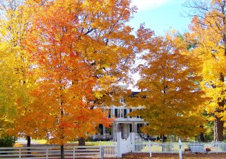old_house_in_autumn_trees_196382